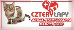 Akcja Marzec – sterylizacja 2020